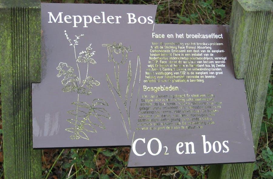 Meppel-05-108_0881
